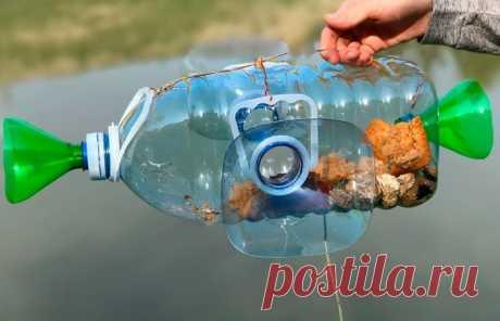Простой способ, как наловить рыбы пластиковой бутылкой
