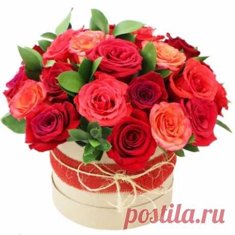 розы в коробочке - Поиск в Google
