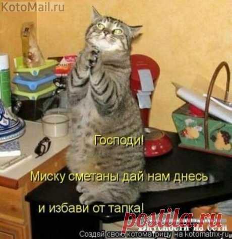Молитва Василия