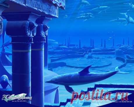 «KAGAYA Dolphins Wallpapers - HD Wallpapers 13622» — карточка пользователя Костя Ф. в Яндекс.Коллекциях