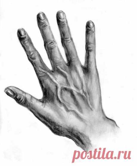 Рисуем руки / Живой лёд глобальных вопросов