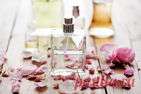 Срок годности парфюмерных ароматов: как продлить и сохранить