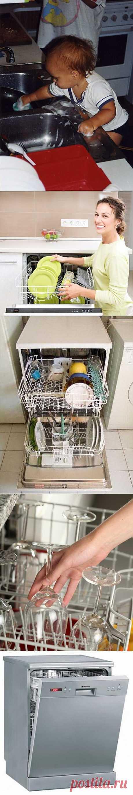 Мы не посудомойки! / Домоседы