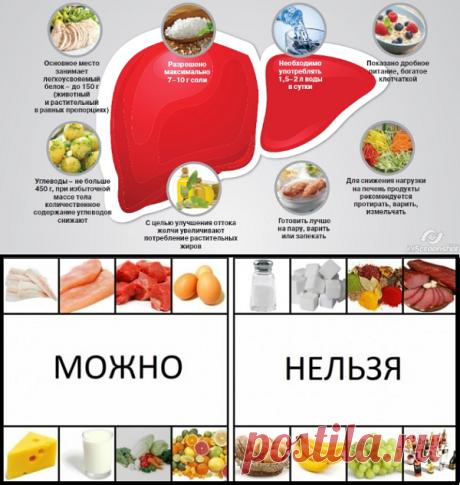 Диета для печени: свойства, применение, положительное влияние на организм   Кладовая здоровья   Яндекс Дзен