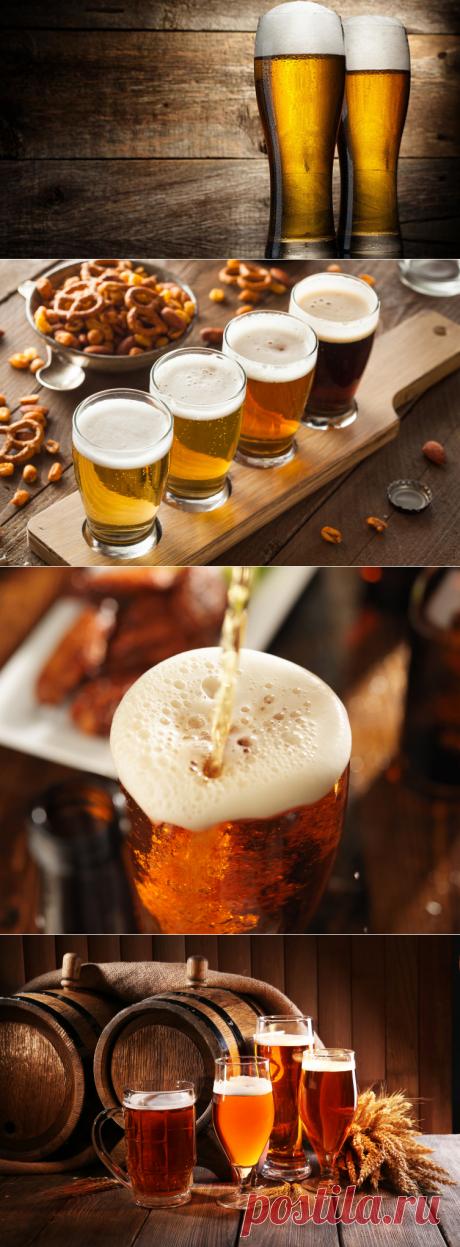 Как сделать пиво вкуснее? | Еда и кулинария