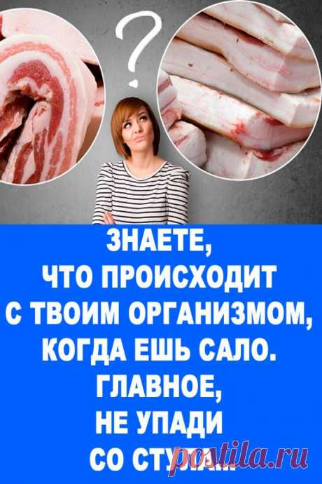 Знаете, что происходит с твоим организмом, когда ешь сало. Главное, не упади со стула… — Женские Советы