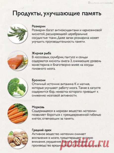 сообщение Профессор_Селезнёв : Продукты,улучшающие память (15:36 03-10-2013) [4524271/293896326] - roksolana44@mail.ru - Почта Mail.Ru