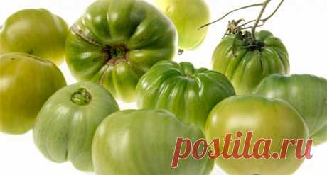 Зеленые помидоры – «Еда»