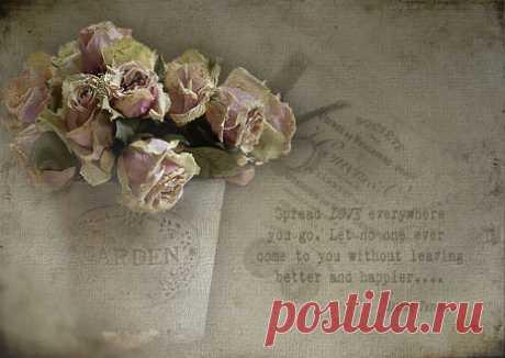 «Лучшая коллекция обоев на рабочий стол цветы бесплатно. Загружено уже 35 175 обоев, страница 1748» — карточка пользователя liuba Г. в Яндекс.Коллекциях