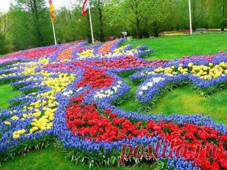 Королевский парк цветов