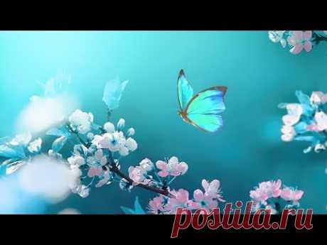 3 Hours Morning Relaxing Music 🎵 Meditation Music, Stress Relief Music (Romantic Morning)
