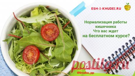 Нормализация работы кишечника | esh-i-khudei.ru