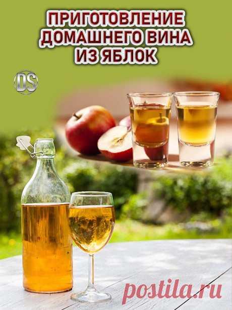 Домашнее вино из яблок (рецепт)   Виноделам-любителям, не имеющим доступа к большому количеству хорошего винограда, рекомендую приготовить вино из яблок по рецепту, опубликованному ниже. Получается очень вкусный и в умеренных количествах полезный напиток крепостью 10-12 градусов.