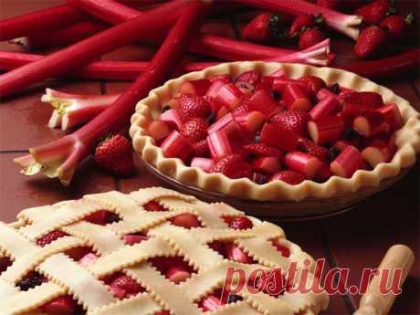 Что приготовить из ревеня - 12 рецептов простых и вкусных сладких блюд