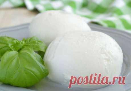 Моцарелла за 40 минут: полкило сыра из 2 литров молока