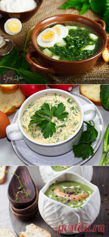 Spring soup from seasonal products