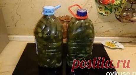 Los pepinos en salmuera (como del barril) en la botella de plástico.