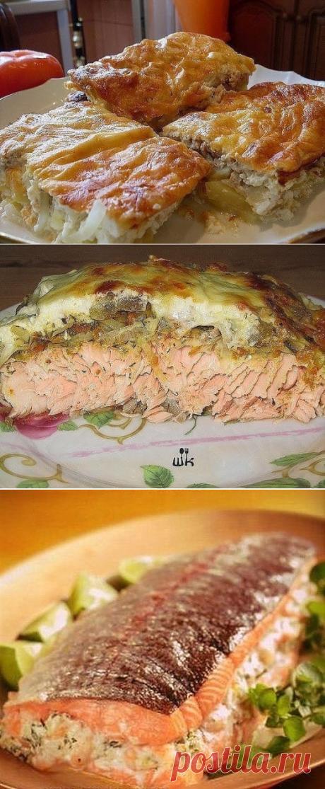 огромная подборка блюд из рыбы.