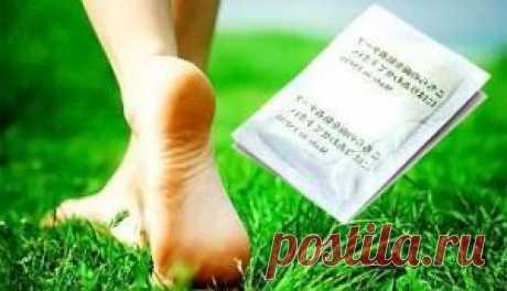 Escogemos el emplasto para el tratamiento de la espuela de talón (chino, pertsovyy, que limpia): las revocaciones
