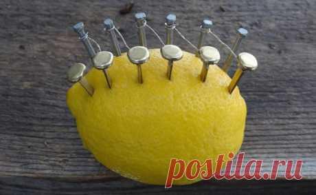 Как с помощью лимона, нескольких гвоздей и проволоки развести костер