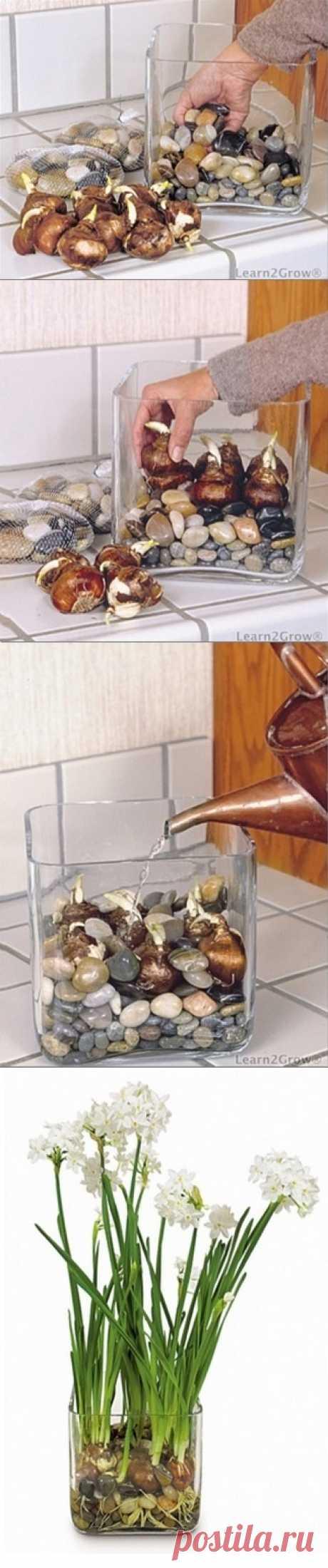 Как чистый, современной мебелью в загородном стиле и посчитать... - вдохновляющие картинки на Joyzz.com