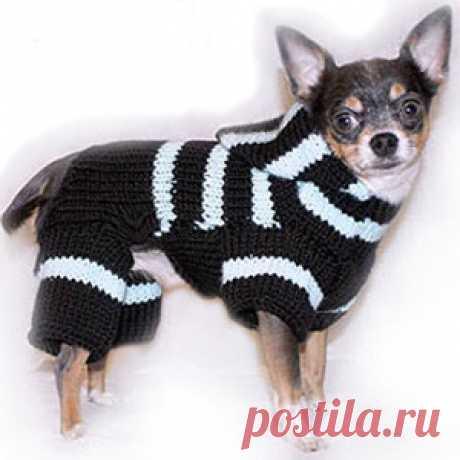 """6.7 *Вяжем для собак #1 - вязание для собак и кошек , свитера, кофты, попоны для собак, комбинезоны, шапочки, обувь для собак,  книгу Корин Ниснер """"Вяжем для четвероногих модников"""", needleworkdogss Jimdo-Page!"""