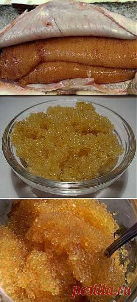 Как засолить икру щуки | Банк кулинарных рецептов