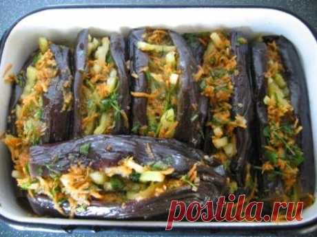 Dishes from an eggplant - the best recipes - preparations. - the Recipe of the stuffed eggplant