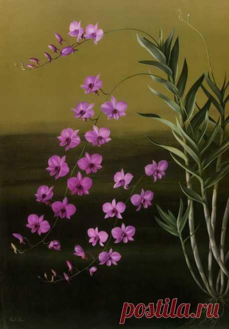 Antique Botanical Prints.Paul Jones. Цветочные принты.