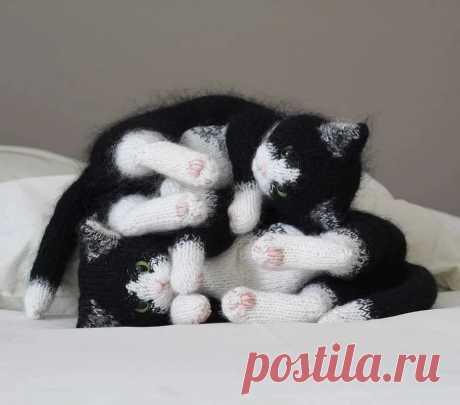 Вязаные котики удивительной реалистичности: рукодельный instagram недели - Сам себе мастер - медиаплатформа МирТесен