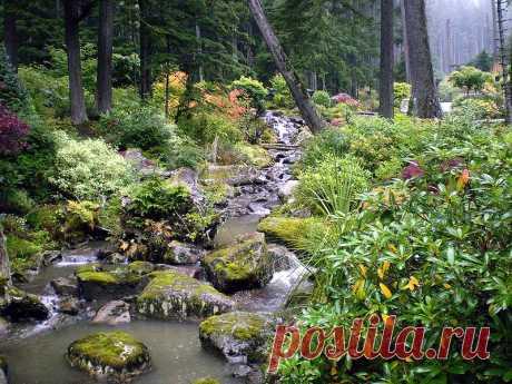 Ботанический сад Glacier Gardens, Juneau, Alaska