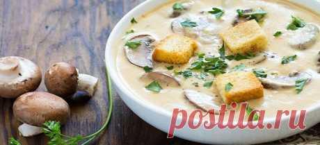 Сырный суп с шампиньонами - 11 рецептов