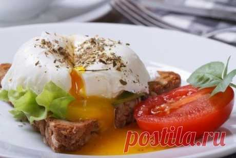 20 лучших блюд из яиц