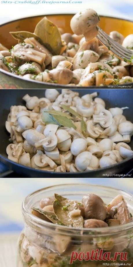 Нежные грибочки в легком маринаде!