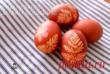 Окрашивание пасхальных яиц с помощью луковой шелухи...  Ингредиенты: ● луковая шелуха (с луковиц около 10-15 шт, в зависимости от того, сколько яиц вы красите)● белые яйца● немного соли (для предотвращения разрушения оболочки)● 1 столовая ложка уксуса (чт…