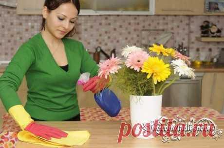 Кухонная эко-находка! Чудо-спрей для чистки кухонных поверхностей! | Хитрости Жизни