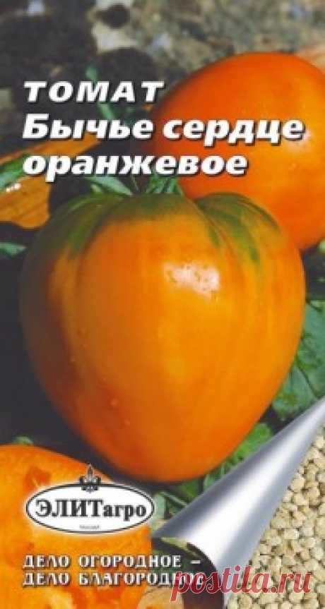 """Семена. Томат """"Бычье сердце"""", оранжевое (вес: 0,1 г) Всхожесть: 89%. Сорт среднеспелый, салатный. Растение индетерминантное. Лист длинный, тёмно-зелёной окраски. Соцветие промежуточное. Плодоножка с сочленением. Плод сердцевидной формы, плотный, средне-ребристый. Окраска незрелого плода зелёная, зрелого - оранжевая. Число гнёзд - более 6..."""