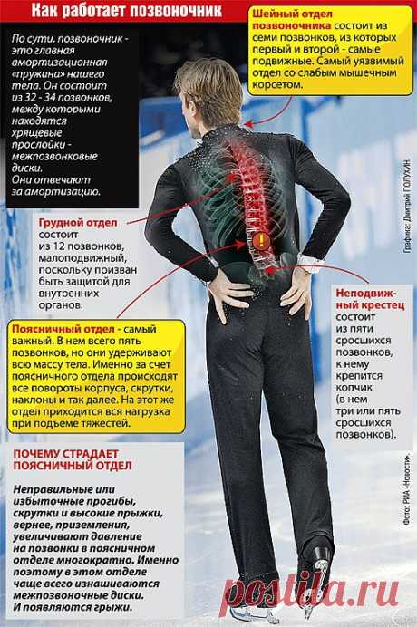 "Evgeny Plushenko: ""We have such here Zhirinovsky... Unfortunately\""\/\/KP.RU"