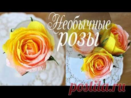 Необычные розы нескольких цветов из бумаги - запись пользователя AlinaRomanovna (Алина) в сообществе Работа с бумагой в категории Другие поделки из бумаги и картона
