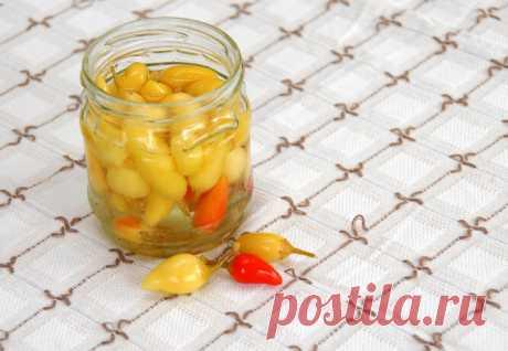 Уксус или лимонная кислота? Какая добавка в консервацию полезнее для желудка?