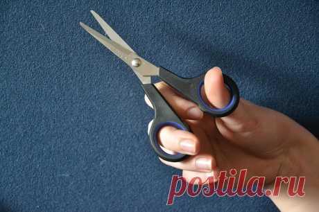 Как заточить ножницы за одну минуту? » Женский Мир