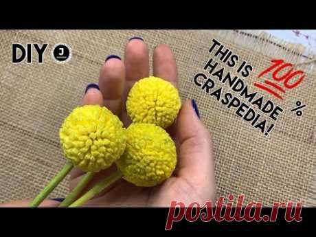 DIY. Handmade Craspedia. МК Краспедия из зефирного фоамирана. - YouTube