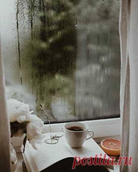 Секрет спокойствия прост: пьёшь кофе - думай о кофе.