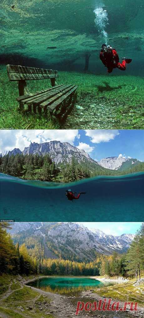 Underwater park of the green lake — the Nature — the Relax!