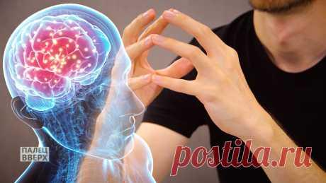Как тренировать память и мозг через упражнения для рук | Палец вверх | Яндекс Дзен