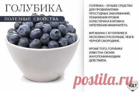 Полезные свойства ягод — Сияние Жизни