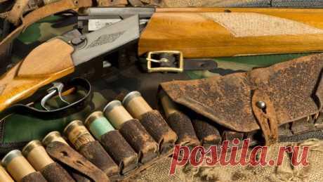 Как выбрать дробь по виду дичи ***При стрельбе по вальдшнепу или рябчику с дистанции 15-25 м нужно применять патроны с дробью № 7-9 из ствола, имеющего цилиндрическую сверловку. Для ружей 12,16 калибров лучше применять разбросные патроны, для 20 же калибра больше подойдут стандартные. Ружье может быть двуствольным с коротким (600-650 мм) стволом, короткоствольным, самозарядным, магазинкой с болтовым затвором или помповиком. Если же стрелять предполагается не ближе 35 м, то дробь лучше…