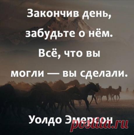 Подборка цитат, которые хочется перечитывать раз за разом📌 | Advance | Яндекс Дзен