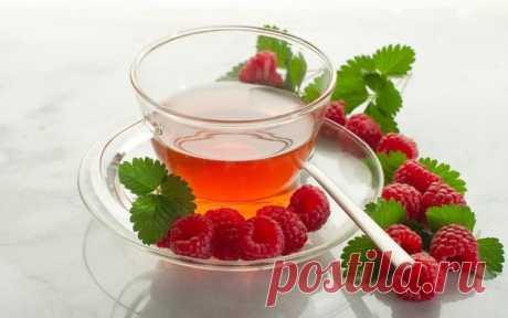 7 очищающих рецептов чая для хорошего самочувствия — Субботний Рамблер