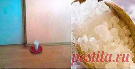 Вот что будет с квартирой,  если поставить на пол стакан с солью и уксусом.  Результат — уже через сутки